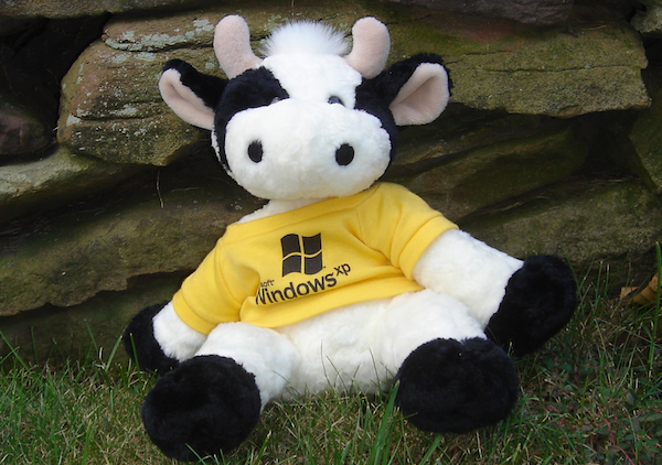 Gateway gave out cows -- befitting its black-and-white moo herd motif -- during Windows XP's New York launch. The direct PC maker started selling XP systems more than a month earlier. [Larry Seltzer]