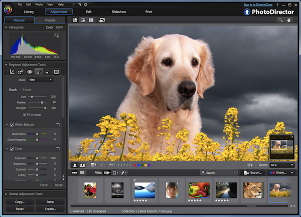 Cyberlink Photodirector 3 Review