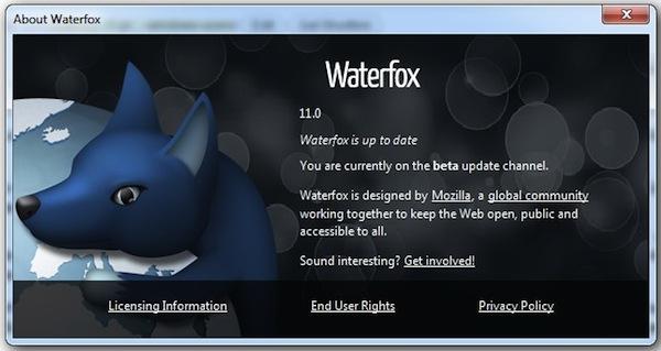 Waterfox 24.0 Final Free Download
