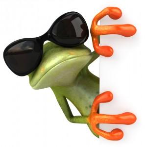 cool frog sunglasses