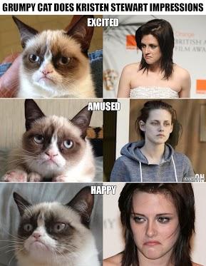 Grumpy Cat Impressions