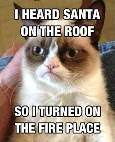 Grumpy Cat Santa roof