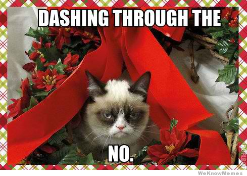 Grumpy Cat dashing no