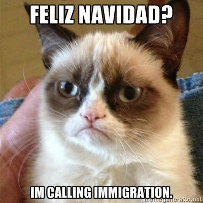 Grumpy Cat immigration