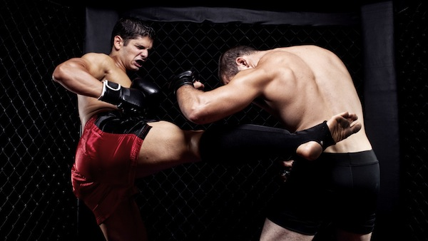 fight fighters boxing kick
