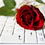 rose keyboard notebook laptop flower
