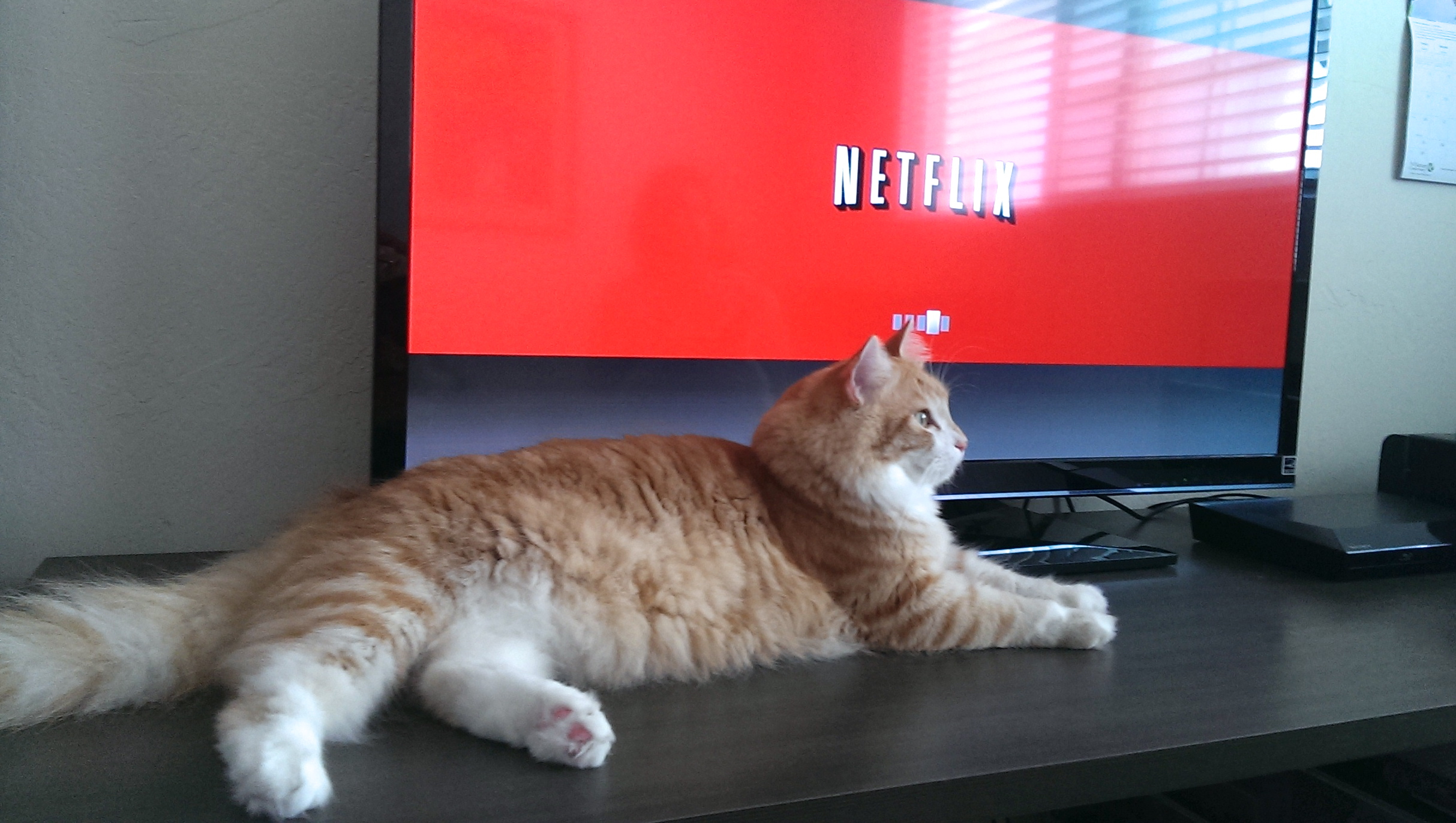 Is Netflix Changing How We Watch Tv Forever