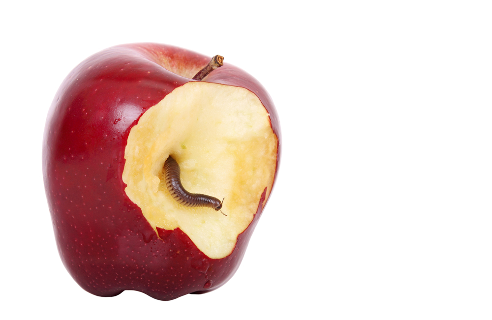 The Apple Myth  Why Security Through Obscurity Isn U0026 39 T Security