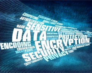 database security and encryption a survey Database security and encryption: a survey study iqra basharat national  university of sciences and technology (nust), h-12  islamabad, pakistan.