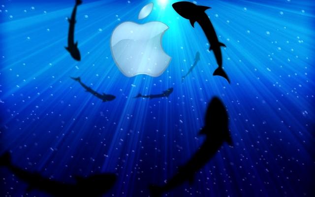 apple_sharks_800_contentfullwidth