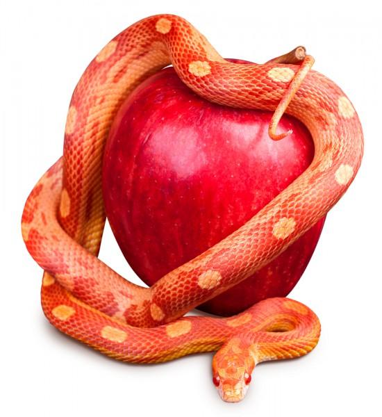 AppleSnake