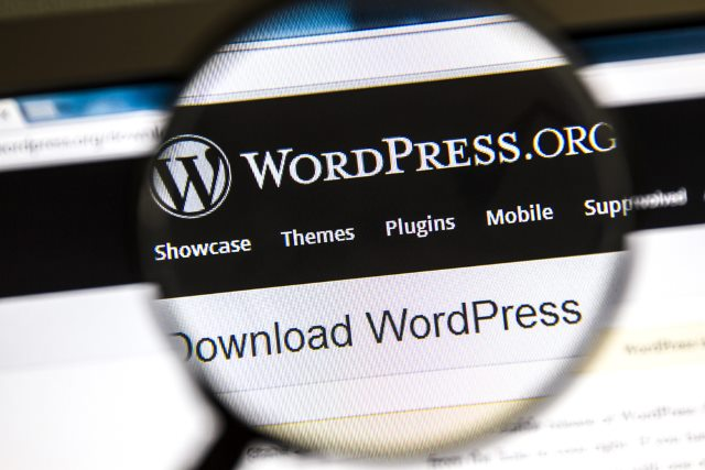 WordPress and other CMSs are 'inherently insecure'