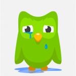Duolingo Windows Phone 2