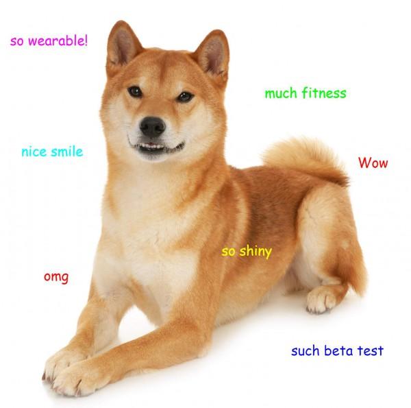 What Dog Breed Am I Microsoft