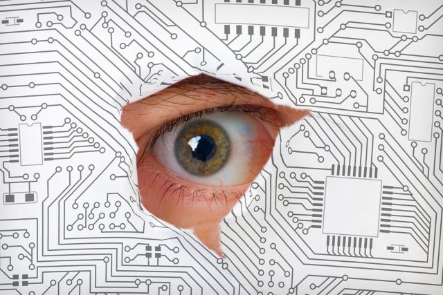 peering_through_circuit_board