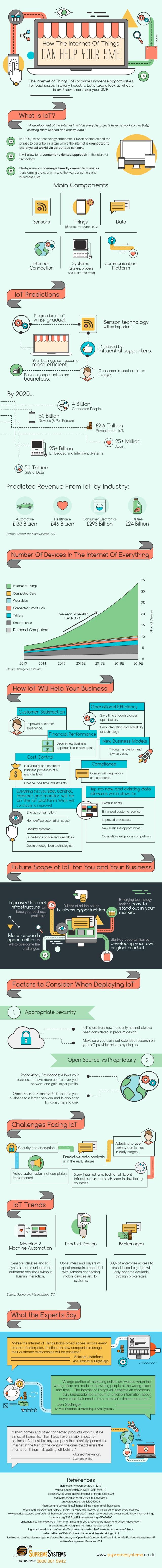 SME IoT infographic