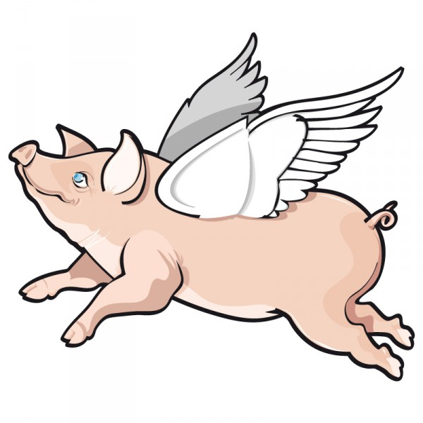 Pigs gonna fly too