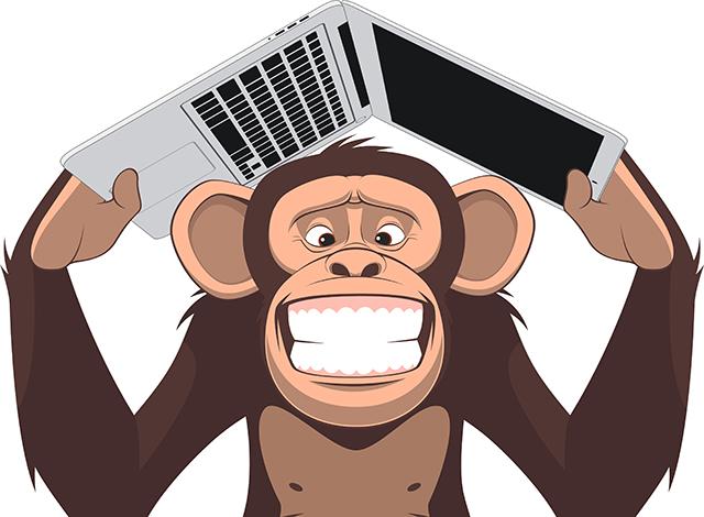 laptop ape