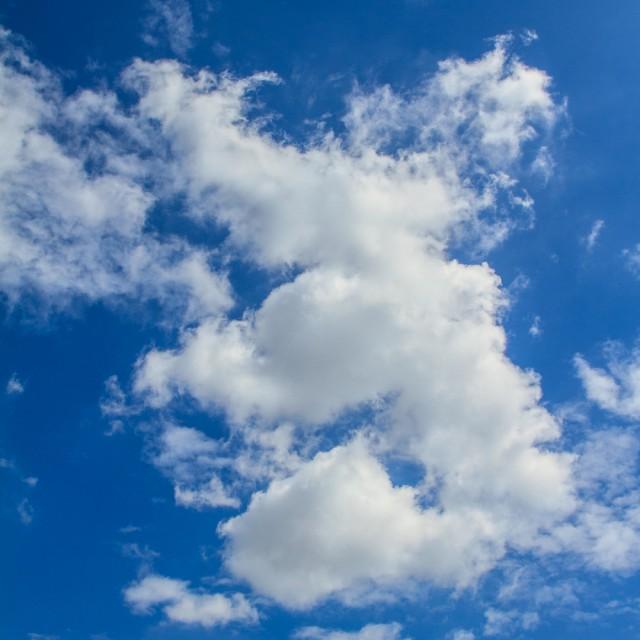 Cloud elephant