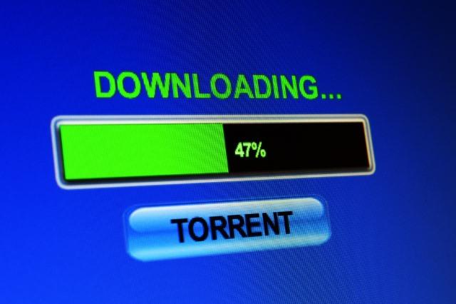 Torrent is not downloading
