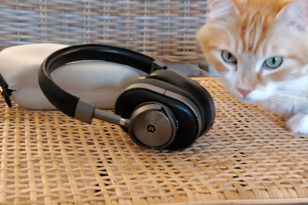 MW60 and Cat
