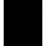 BlackBirdCleaner.200.175