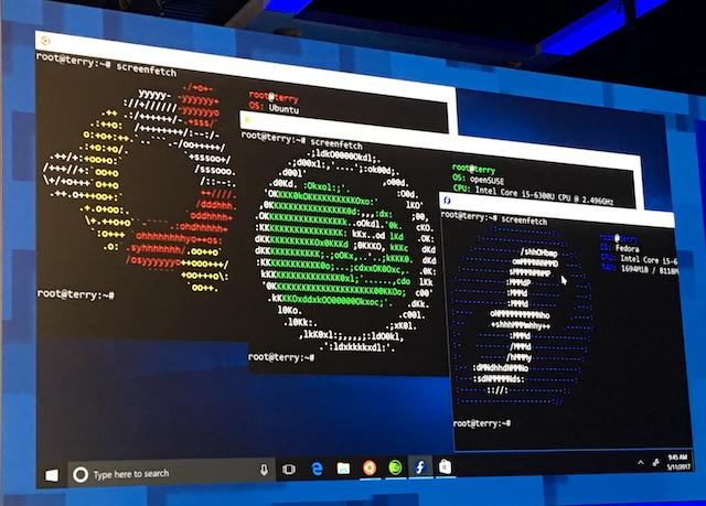 Windows_Store_Linux_Fedora_Ubuntu_SUSE