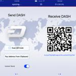 Dash iOS app 1