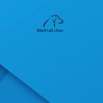 Black_Lab