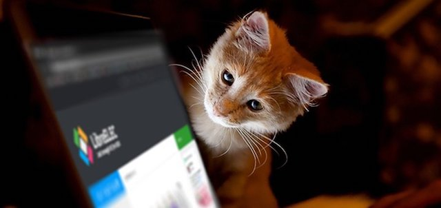 LibreELEC_Cat