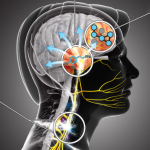 Neuro thumb