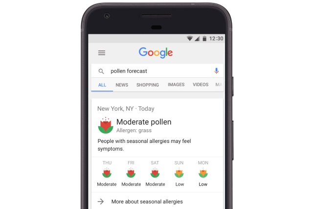 Achoo! Watch out for seasonal sniffles with pollen forecasts on Google