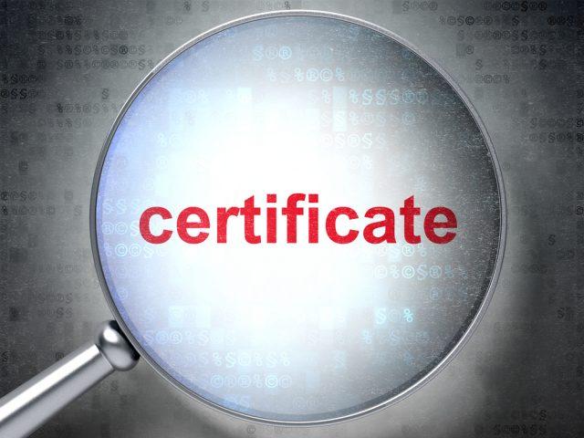 Vergrößertes Zertifikat