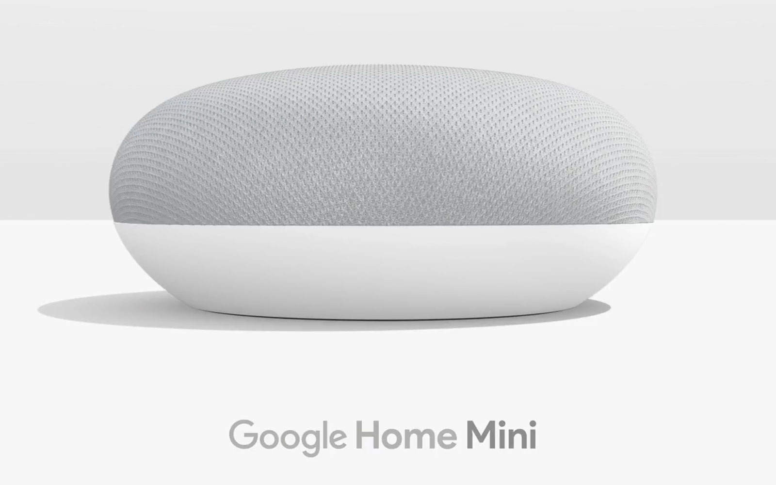 Home mini1
