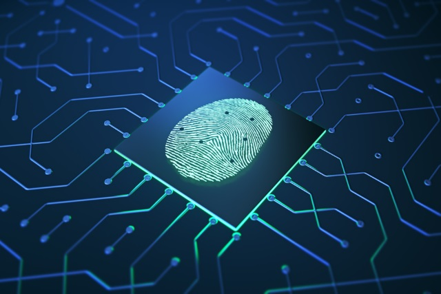 Fingerprint on a chip