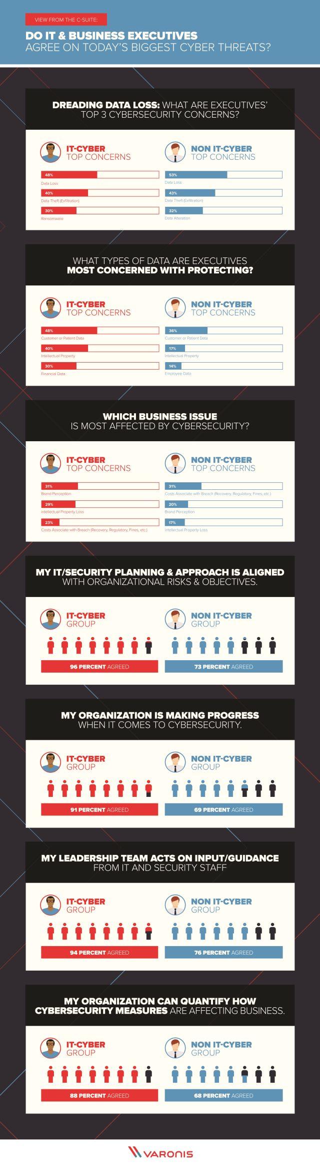 Varonis infographic