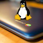 Linux logo on Chromebook