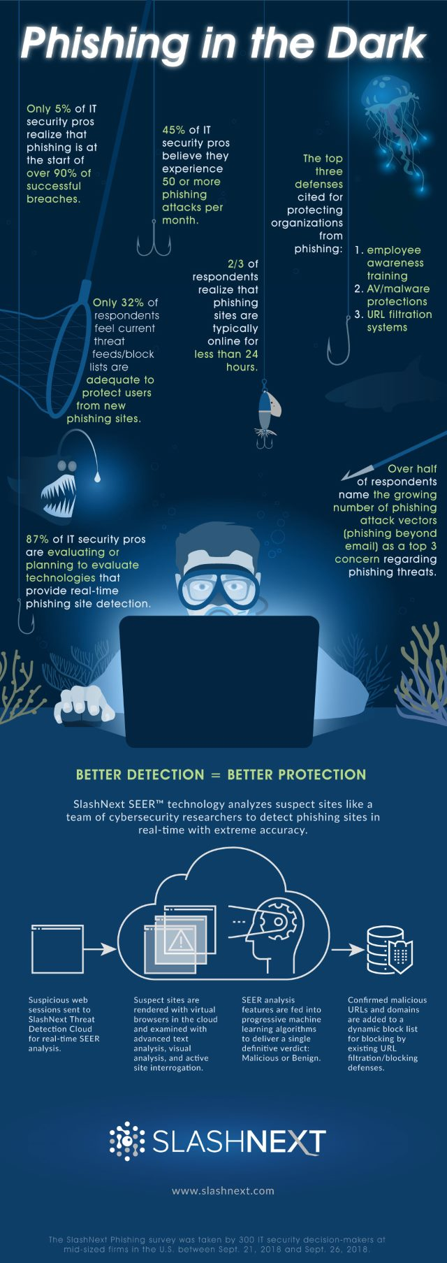 phishing risks infographic