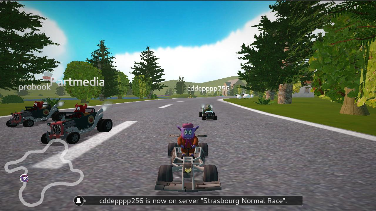 photo of SuperTuxKart, the open source Mario Kart clone, achieves beta status with network support image