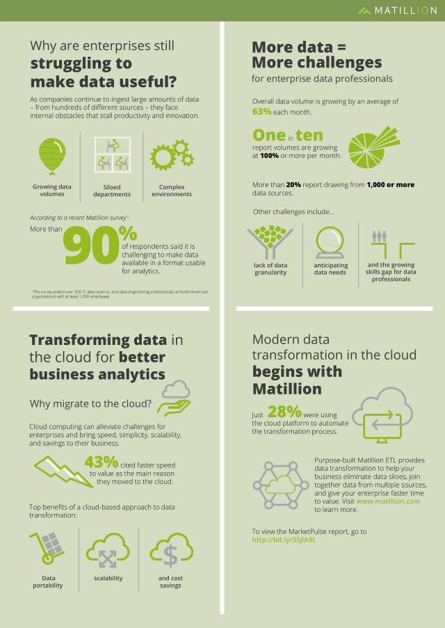 IDG/Matillion infographic