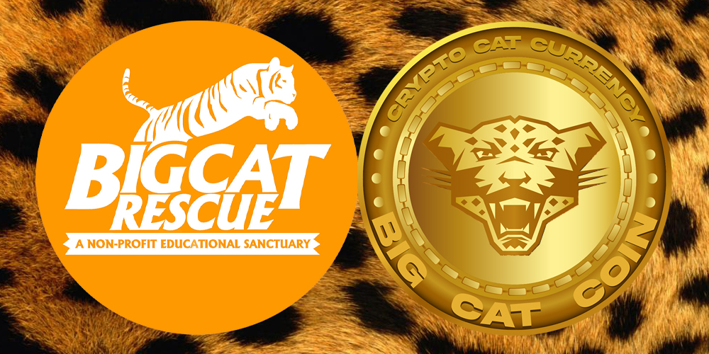 photo of Tiger King's Carole Baskin launches her own crypto 'purr-ency' -- $CAT image