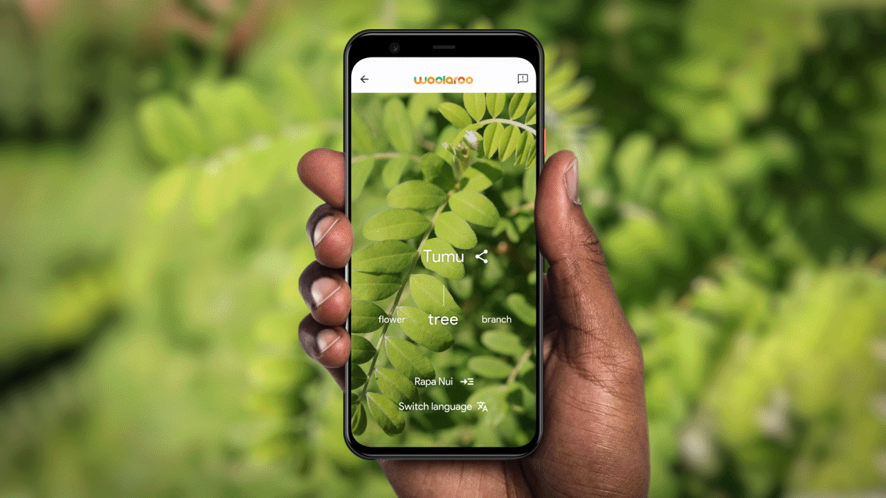 photo of Google Arts & Culture's open source Woolaroo app uses AI to help preserve endangered languages image