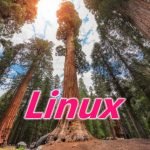 Linux sequoia