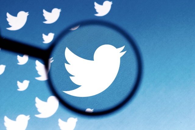 Twitter logo through a magnifying glass