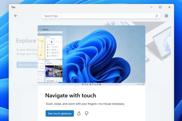 Windows 11 Tips app