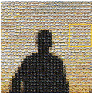 National Geographic Digital Media mosaic