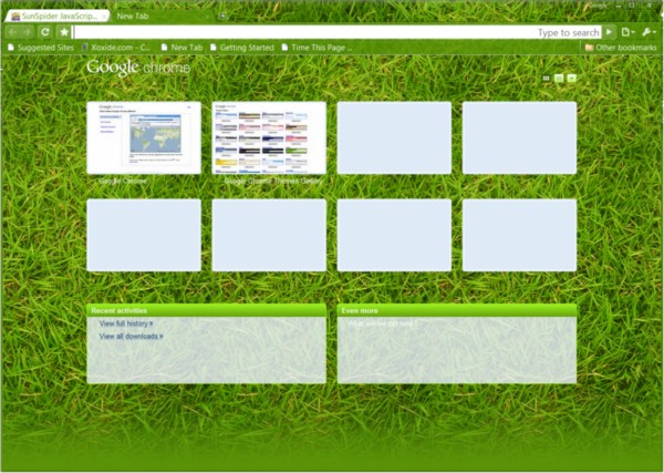 Google Chrome 3.0.196.2 showing off one of its new optional themes, 'Grass'