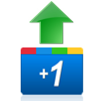 Google  1 button aka upboat aka like button